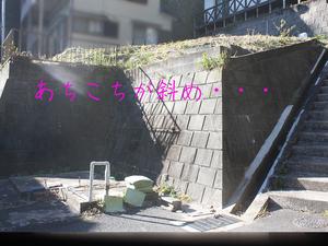 yokosukashi-nagase-y-jichinsai2.jpg