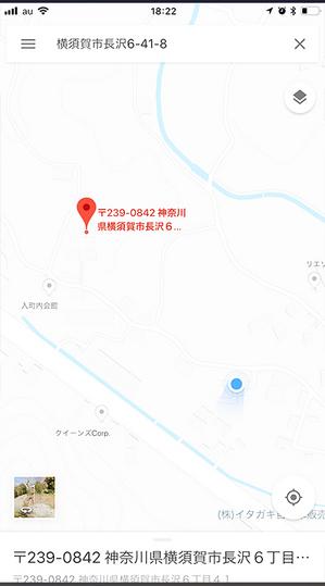 2018-tsuuken-sakura-namiki4.jpg
