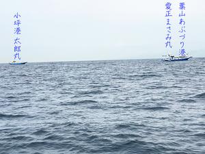 aisho-masami-tairyou-hune5.jpg