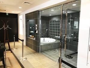 artis-bathtub-kengaku9.jpg