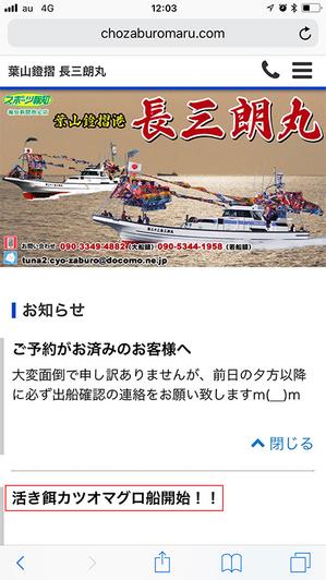 葉山の夏が本格的に始まるか?!|蒼い弾丸釣り☆
