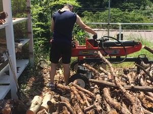 夏場の薪ストーブ用の薪造り|敷地の有効利用方法の巻!